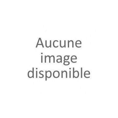Nectarine Arkings (Pot de 10 L 1/2...